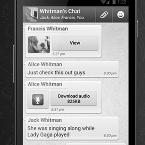 disputor example - WhatsApp